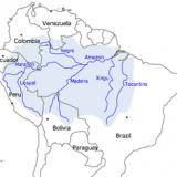 280px-Amazon_river_basin
